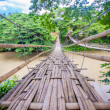 Hinged bridge over the River Loboc in Bohol, Philippines — Stok fotoğraf