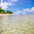 Tropical perfect beach with green palms,white sand and turquoise water — Stock Photo