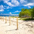 Perfect white beach with turquoise water and a small fence on desert island — Stock Photo #42867953