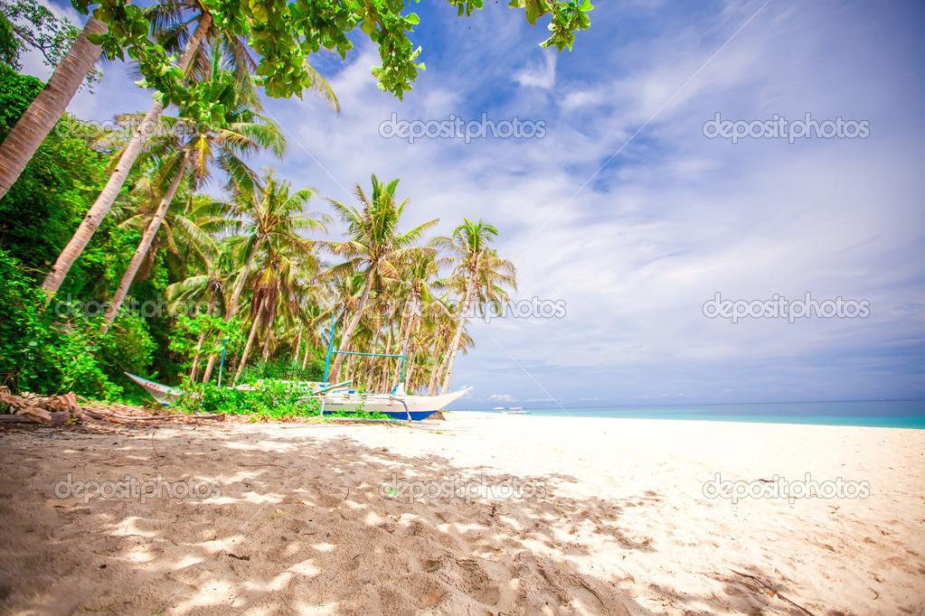Island Beach Palm Tree Desert Island With Palm Tree