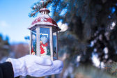 Beautiful fairytale lantern hanging on fir branch in forest — Stock Photo
