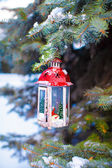 Beautiful red fairytale lantern hanging on snowy fir branch in forest — Foto de Stock