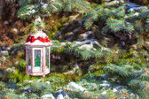 Beautiful red fairytale lantern hanging on snowy fir branch in forest — Stockfoto