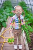 Menina bonita com a colheita em uma estufa — Fotografia Stock