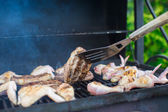 Grilled steak and chiken cooking on an open barbecue — Stock Photo