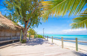 Tropical beach with palms and white sand on Caribbean — Stock Photo