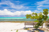 Wild landscape with bench on the tropical Caribbean island — Stock Photo