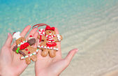 Close up of christmas gingerbread cookies in hands — Stock Photo