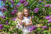Giardino di adorabili bambine alla bella fioritura lilla — Foto Stock