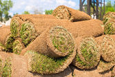 Big stacks of sod rolls for new lawn — Stock Photo