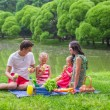 Happy family picnicking in the park — Stock Photo #48423389