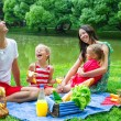 Happy family picnicking in the park and have fun — Stock Photo