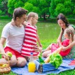 Happy family picnicking in the park — Stock Photo #48423543