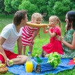 Happy family picnicking in the park and have fun — Stock Photo #48423577