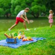 Happy family picnicking in the park — Stock Photo #48423735