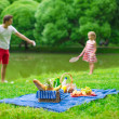 Happy family picnicking in the park — Stock Photo #48423751