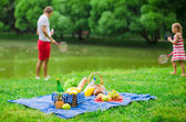 Picnic basket with fruits, bread and bottle of white wine — Stock Photo