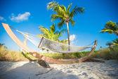 Tropik sahilde palm gölgesinde şirin hamak — Stok fotoğraf