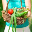 Close-up basket of greens in womans hands — Stock Photo #50663969