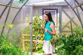 Serada soğan ve yeşilliklerle sepeti tutan genç kadın — Stok fotoğraf