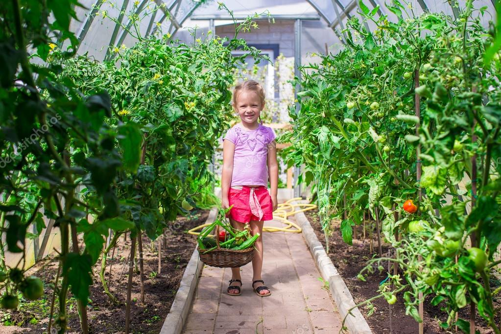 Cute Little Greenhouses Cute Little Girl Collects Crop