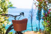 Beautiful vintage bicycle with basket on background of Bosphorus — Stock Photo