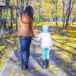 Back view of young mother and her adorable daughter walking in yellow autumn park — Stock Photo #51313055