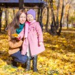 Little cute girl and happy mother in yellow autumn park — Stock Photo #51313071
