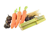 Saccharum sinense,carrot,Water-chestnuts,cogongrass rhizome — Stock Photo