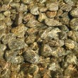 Royalty-Free Stock Photo: Clear water and stones