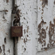 Stock Photo: Old door with lock