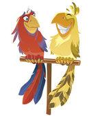 Parrots — ストックベクタ