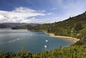 Portage Bay, Marlborough Sounds, South Island, New Zealand. Queen Charlotte Track. Tasman Sea. — Stock Photo