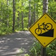 Downhill bike sign on trail in Itasca State Park, Northern Minnesota, USA — Stock Photo #31642627