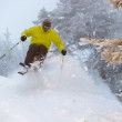 Expert skier on a powder day. — 图库照片