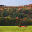 Old farm tractor in a field. - Foto de Stock