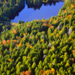 Aerial view of fall foliage in Vermont — Stock Photo