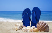 Flip-flops with seashells on sandy beach — Stock fotografie