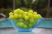 Grape by the swimmimg pool — Stock Photo