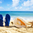 Flip flops, seashell and starfish on sandy beach — Stock Photo