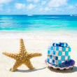 Starfish and seashell with Christmas decoration - holiday concep — Stok fotoğraf