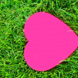 Stock Photo: Heart shape on grass