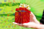 Gift box in woman's hands — Stock Photo