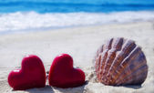 Seashell with hearts by the ocean — Stock Photo