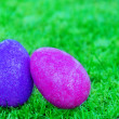 Easter eggs on the grass — Stock Photo #39070197