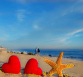 Starfish with hearts on the sandy beach — Stock Photo