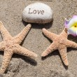 Two Starfishes with rock on beach — Stock Photo #41240563