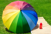 Umbrella and water bottle on the grass — Stock Photo