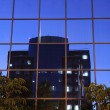Building reflection — Stock Photo #24999091