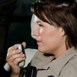 Female police officer — Stock Photo #25086397